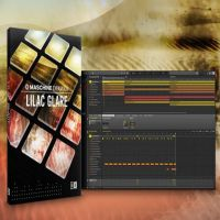 Native Instruments Maschine Expansion Lilac Glare v1.0.0