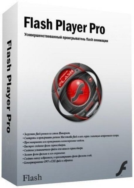 Flash Player Pro 6.0