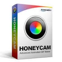 Bandisoft Honeycam v1.04