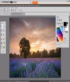 Corel Paintshop Pro 2019 Ultimate 21.0.0.67 incl Keygen