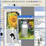 PhotoLine v21.00 incl Patch