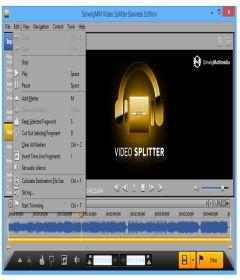 SolveigMM Video Splitter Business Edition 6.1.1807.20 + Serial