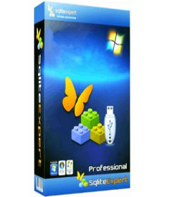 SQLite Expert Professional 5.3.0.333 x86+x64 + License