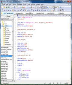 EditPlus 5.1 Build 1778 + key