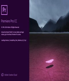 Adobe Premiere Pro CC 2019 v13.0.3.9