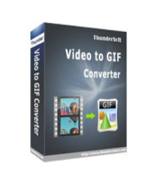 ThunderSoft GIF Converter with Patch