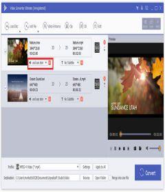 Apeaksoft Video Converter Ultimate + patch