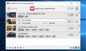 YouTube Downloader 3.9.9.32 (2401) + patch